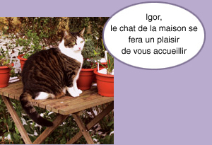 chat Clamart